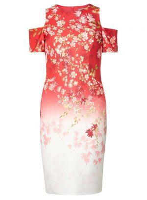 DP Ombre Floral Dress