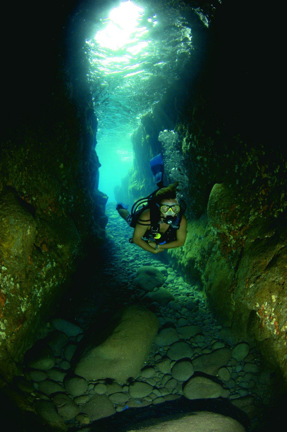Montserrat - Dive Reef 2