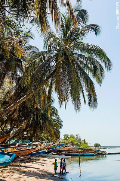 Holiday of a lifetime in The Gambia