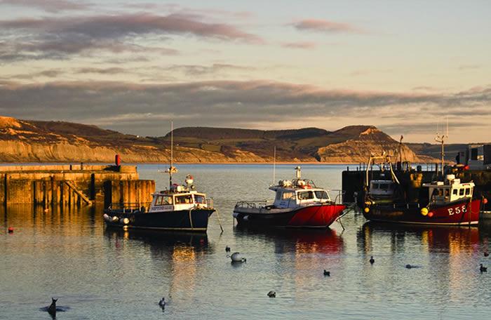 Cobb Harbour Lyme Regis Dorset